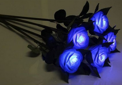 LED Blue Rose lights
