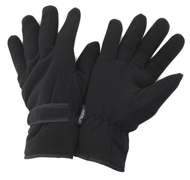Thinsulate Winter Thermal Fleece Gloves