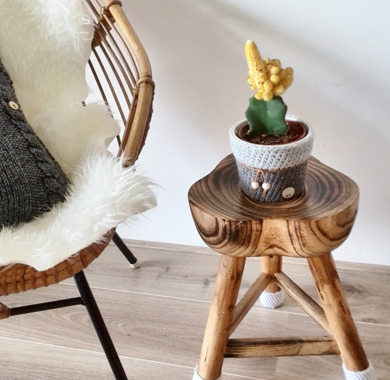 Cactus Planters for 2016 13
