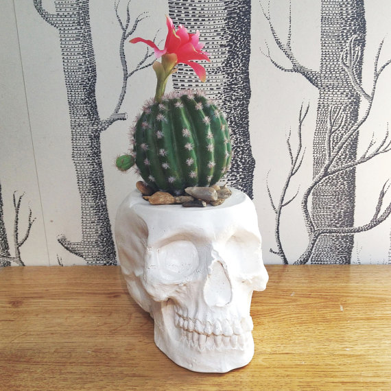 Cactus Planters for 2016 2