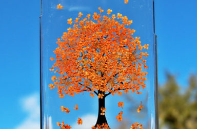 fall-themed-iphone-cases-2016-14