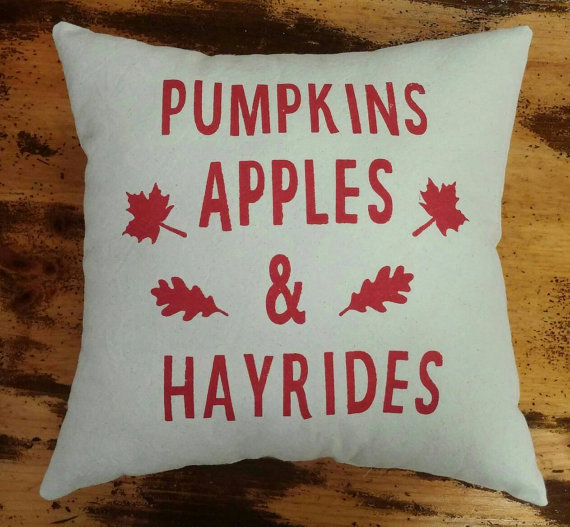 20-stylish-fall-pillows-2016-18