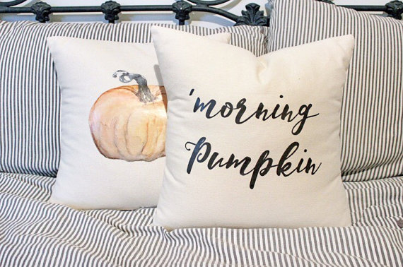 20-stylish-fall-pillows-2016-6
