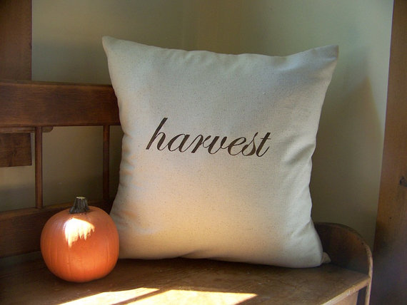 20-stylish-fall-pillows-2016-9